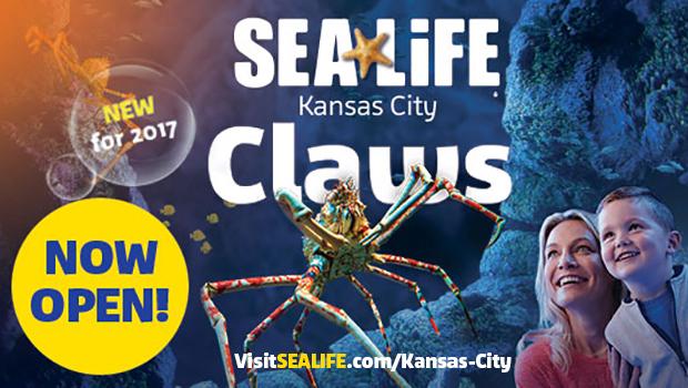 Upcoming Travel: SEA LIFE Kansas City Aquarium | Ellie And Addie