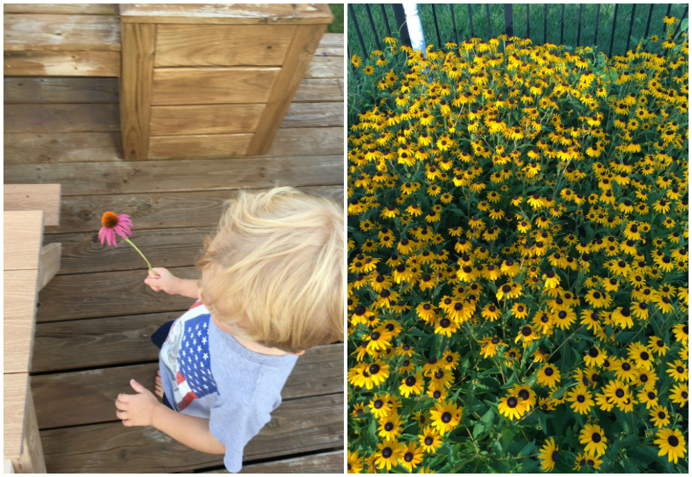 Day In The Life – July 2017 | Ellie And Addie