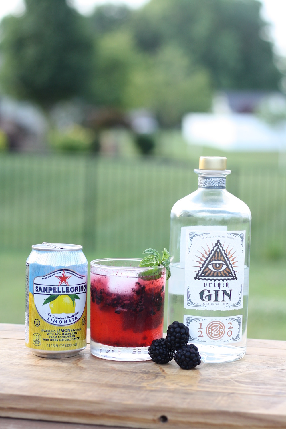 Blackberry Gin Fizz Cocktail Recipe - A cocktail recipe with gin and fresh blackberries from Eckert's Country Store and Farms from Liz at Ellie And Addie