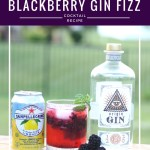 Blackberry Gin Fizz Cocktail Recipe