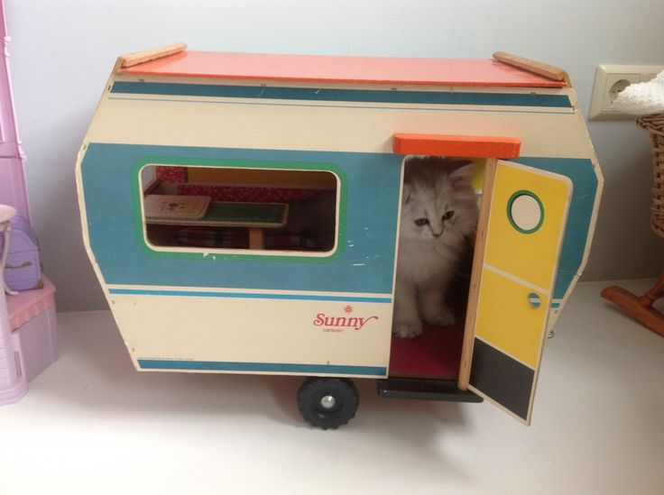 cat in a toy caravan