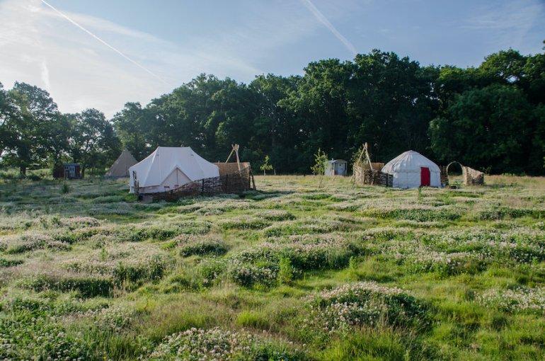 knepp safaris and woodland camping near brighton
