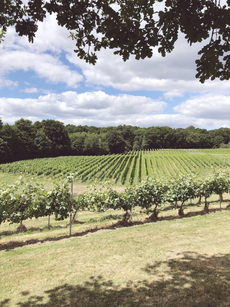 bluebell winery east sussex