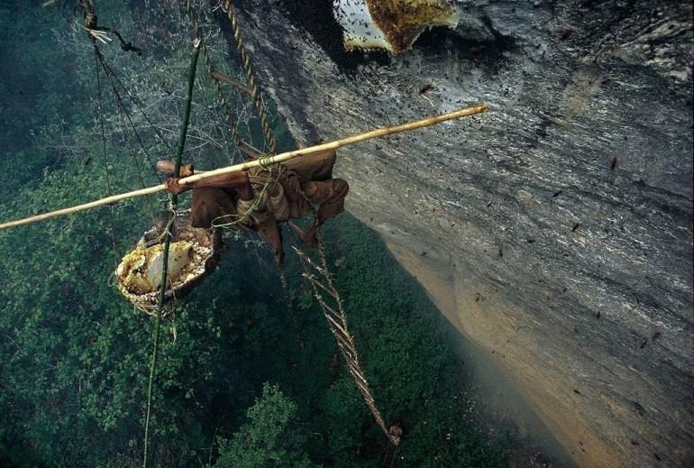 honey hunter nepal