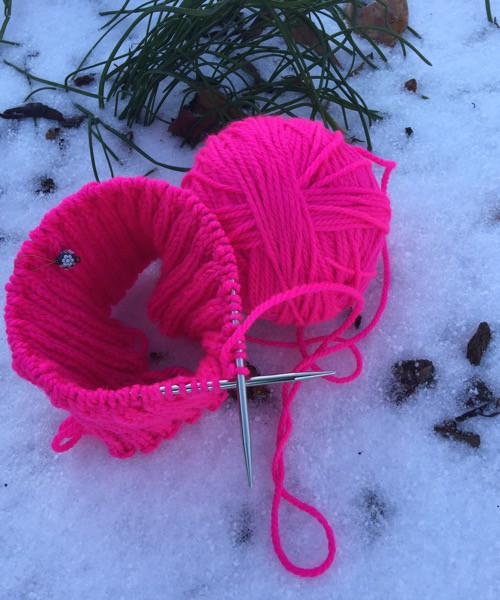 Pussy Hat in the Snow