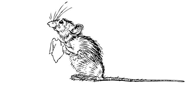 "Mouse illustration - ""Bank Holiday Misery"" Short Story"