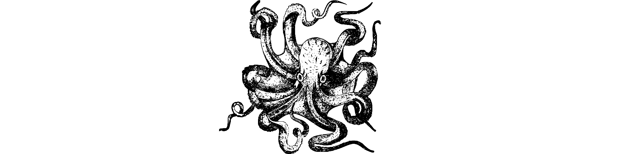 "Octopus illustration - ""Stress Relief"" short story"