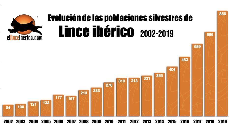 Evolucion_linces_iberico_2019