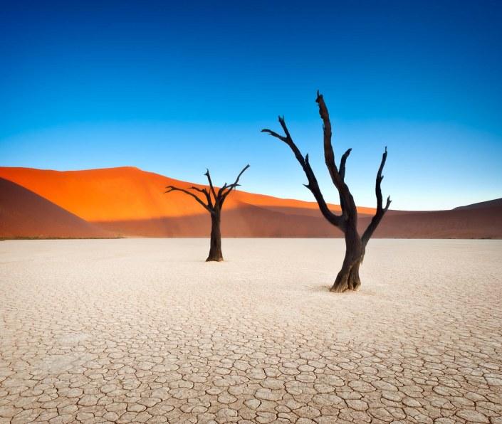 Deadvlei—Namibia