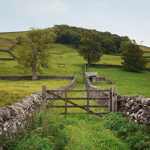 Stone Walls, Settle, England