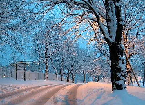 Snowy Night, Trondheim, Norway