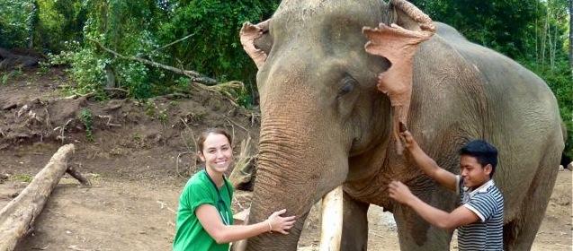 Karla-Nova-elephant-veterinarian-Laos