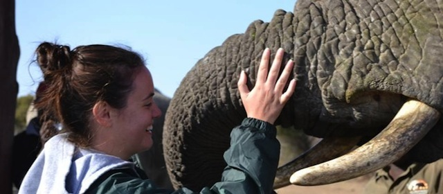 Alison-Palmer-adventures-with-elephants-South-Africa-featured
