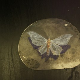 drowning moth