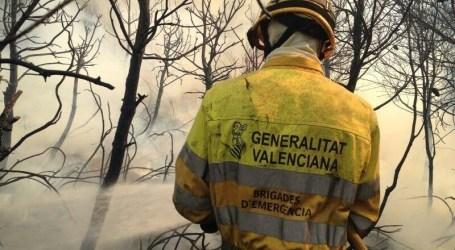 Torrent extrema la seguridad en El Vedat y zonas boscosas del municipio para evitar posibles incendios forestales