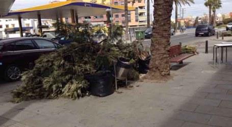 UPyD pide al Ayuntamiento de Catarroja que estudie poner en valor los restos de las podas