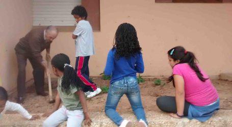 L'hort ecològic del Centre de Dia 'La Closa' de Xirivella dóna els seus fruits