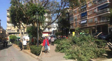 Comencen els treballs de millora i condicionament de la Plaça Major de Paterna