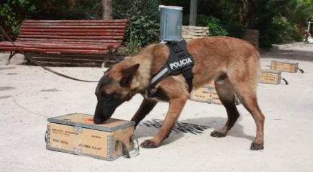 La Unidad Canina de Burjassot consigue localizar a cuatro personas que portaban estupefacientes