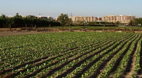 El PP de Xirivella denuncia el «descontento del Consell Agrari con el gobierno»