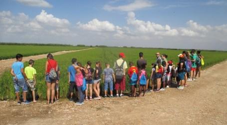 Los niños y niñas de l'Estiu Lúdic de Alfafar visitan la Marjal