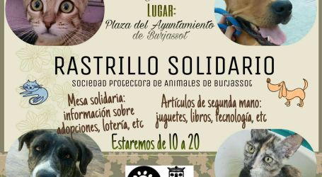 Vuelve el rastrillo solidario de la protectora de animales de Burjassot