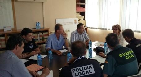 Picassent reforça la vigilància al camp per a evitar el robatori de kiwis