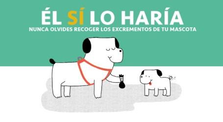 Mislata, nuevo municipio en implantar el censo de ADN canino