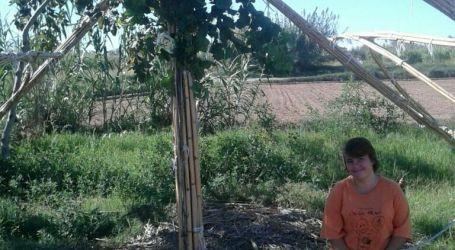 Aumentan los participantes en huertos sociales en Massanassa