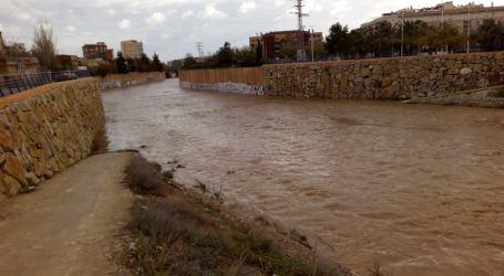 Caídas de árboles en Xirivella, Paterna, Manises y Quart por las lluvias
