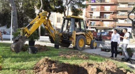 Burjassot contará con 206 nuevos árboles y 937 nuevos arbustos en sus calles y espacios abiertos