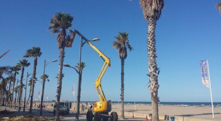Alboraia aprova per unanimitat una moció per a estudiar la remunicipalització del servei de neteja de platges i de jardins