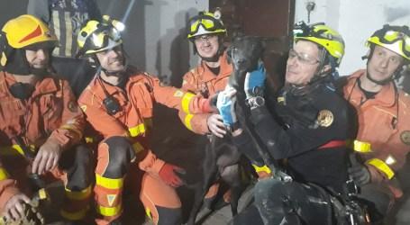 Rescaten un gos a Quart de Poblet que havia caigut a un pou