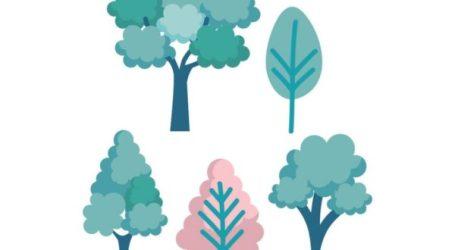 Godella plantará 200 ejemplares de árboles con motivo del Día del Árbol