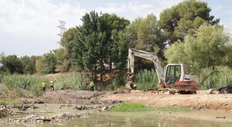 Paterna elimina las especies invasoras en el cauce del rio Turia y La Vallesa