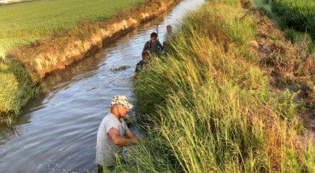 Albal contrata a seis peones agrarios para limpiar y tratar sus barrancos