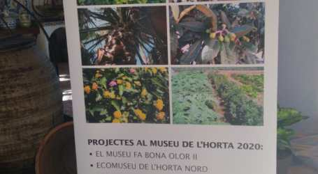 El Museo de l'Horta de Almàssera da «Un Paso Adelante»