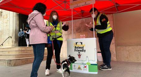 Paterna pone en marcha una campaña informativa sobre las medidas tomadas en Bienestar Animal