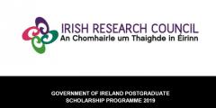 منحة الحكومة الأيرلندية