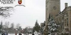 منحة جامعة جويلف للحصول على البكالوريوس في كندا 2021