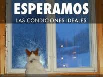 ESPERAMOS_LAS_CONDICIONES_IDEALES