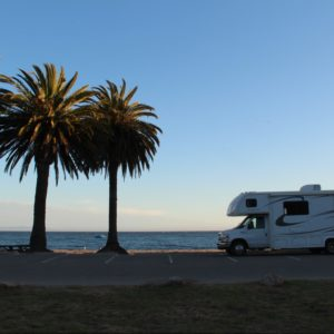White Class C RV parked on the beach next to two palm trees at sunset.