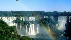 أسرار غابات الأمازون