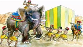 قصة أصحاب الفيل للأطفال