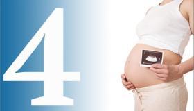 ما هى جميع أعراض الحمل فى الشهر الرابع كاملة بالتفصيل؟