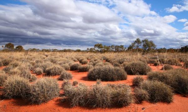 أكبر الصحاري في أستراليا