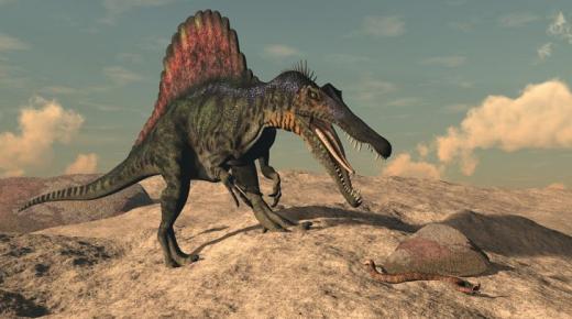 أهم المعلومات عن الديناصور سبينوصور