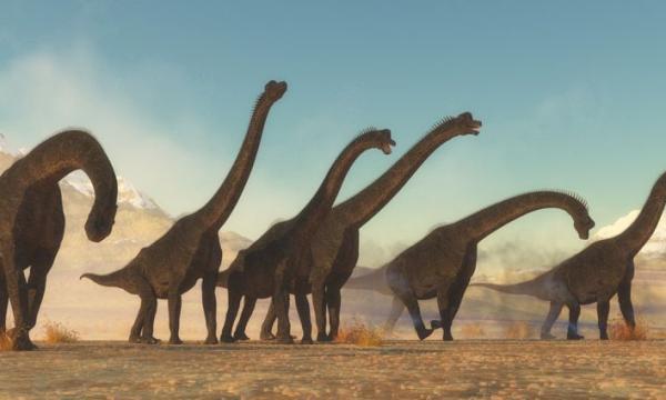 أهم المعلومات عن براكيوصورس