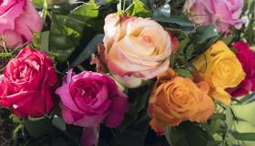 تفسير حلم رؤية الورد فى المنام