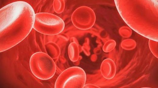 ما وظيفة كريات الدم الحمراء ؟